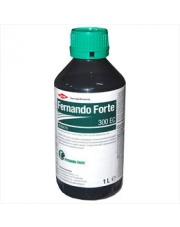 FERNANDO FORTE 300 EC  1 L